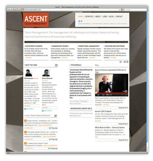 Ascent Consult Website